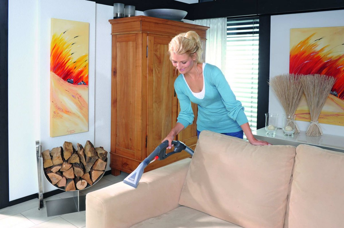 Чем убрать разводы с дивана в домашних  282