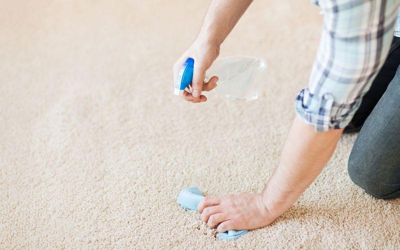 как почистить ковер от запаха и пятен мочи