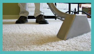 чистка ковров шегги на дому